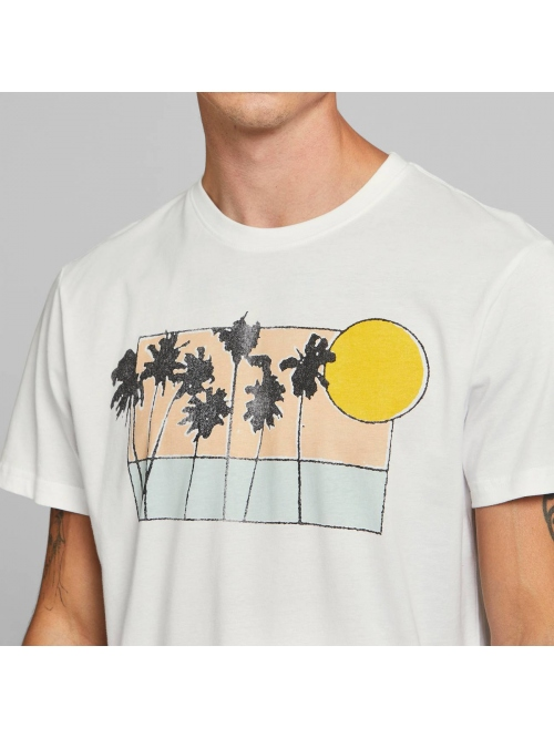 DEDICATED SUNSET PALMS T SHIRT